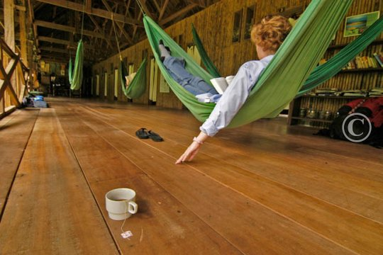 Hammocks for the guests leisure at Tabmopata research Center